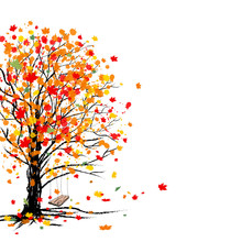 Autumn Tree On White Background