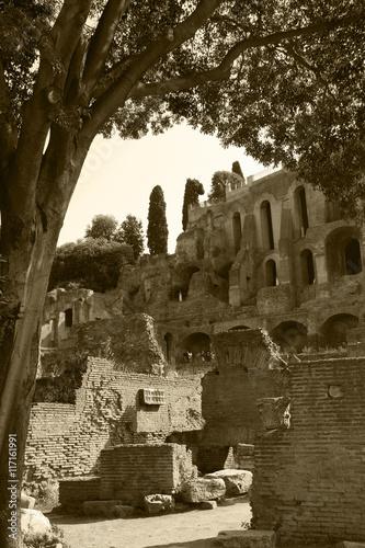 Photo  Rome,Italy,Roman Forum.