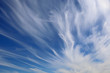 canvas print picture - many strange white cirrostratus in the sky
