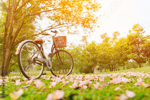 Beautiful landscape of vintage bicycle and flowers