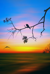 FototapetaColorful illustration of picturesque sunset landscape. 3D illustration.