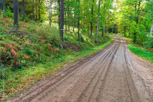 Papiers peints Retro Gravel road through the forest