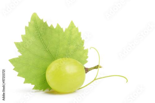 Valokuva  grain de raisin