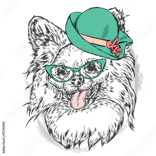 Photo sur Toile Croquis dessinés à la main des animaux Cute puppy in a hat and sunglasses. Vector illustration for greeting card, poster, or print on clothes. Fashion & Style. Vintage. Beautiful dog.