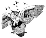 Hand drawn owl for your design, wildlife concept - 117307504