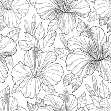 Vector Seamless Pattern With Ornate Chinese Hibiscus Flower, Bud And Leaves On The White Background. Monochrome Floral Background With Hibiscus In Contour Style For Summer Design And Coloring Book.