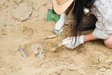 Anthropology - Unearthing Huma...