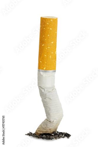 Fotografie, Obraz  cigarette butt