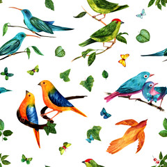 Fototapeta Do sypialni Seamless pattern with watercolor birds, green leaves and butterf