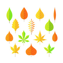 Autumn Leaves On A White Isolated Background Cartoon Style In Vector EPS 10