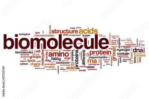 Biomolecule word cloud concept Canvas Print