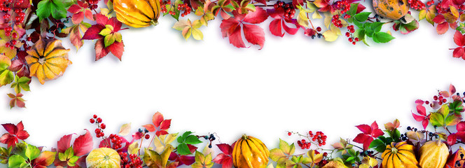 Fototapeta Liście Colorful Fall Leaves On White - Autumn Decorative Border