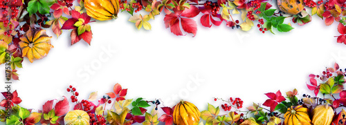 Colorful Fall Leaves On White - Autumn Decorative Border - 117537527