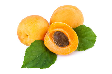 Apricots and half with fruit kernel on white.