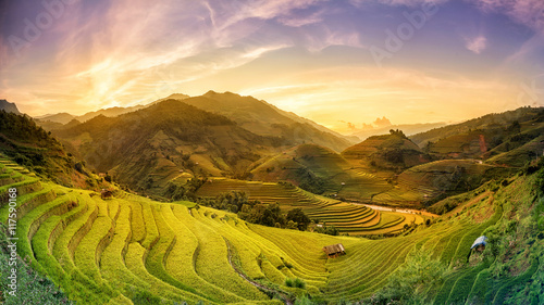 Obraz na PCV (fotoboard) Rice fields on terraced in sunset Mu chang chai, Yen bai, Vietnam