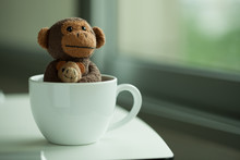 Monkey Doll In A Coffee Cup