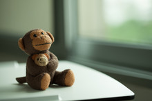 Monkey Doll On The Table