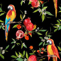 Fototapeta Egzotyczne Tropical Flowers, Pomegranates and Parrot Birds Background