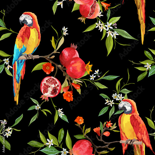 Fotobehang Papegaai Tropical Flowers, Pomegranates and Parrot Birds Background