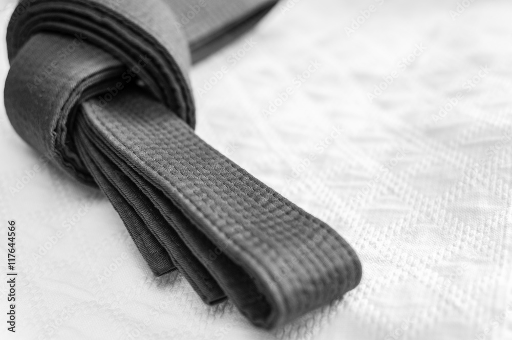 Judo Karate Or Aikido Belt On White Kimono Fotografie