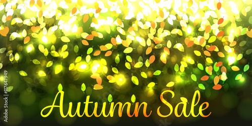 Fotografie, Obraz  Autumn sale