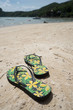 Flipflops on a sandy ocean beach over tropical landscape. Summer vacation concept