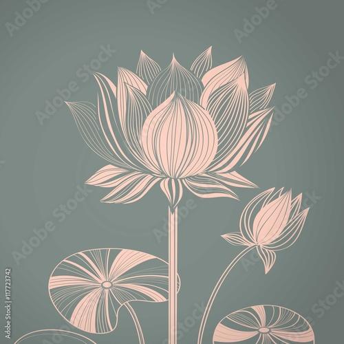 Fototapeta Abstract lotus flower obraz na płótnie
