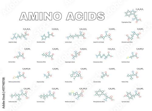 Amino acids set Canvas Print