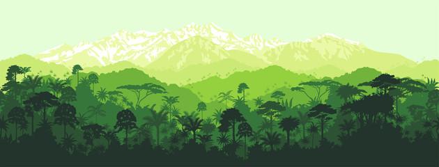 Fototapeta Vector horizontal seamless tropical rainforest Jungle with mountains background
