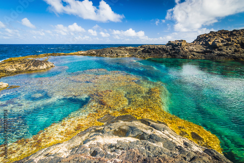 Photo sur Aluminium Iles Canaries Incredible natural pool at the coastside of lanzarote in nature. Lanzarote. Canary Islands. Spain