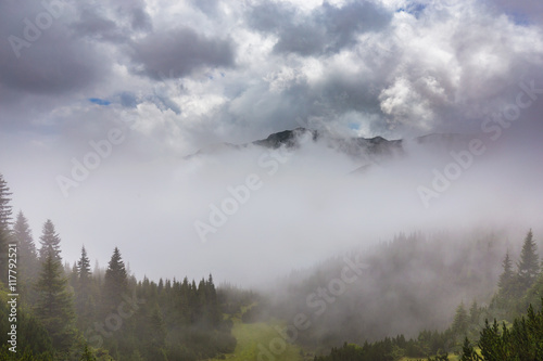 Poster Morning with fog Mountain scenery in the Transylvanian Alps in summer, with mist clouds