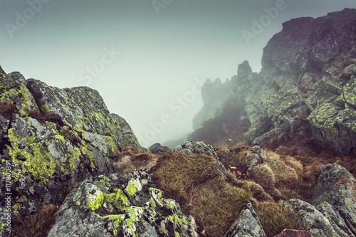 Foto op Aluminium Aubergine Mountains background