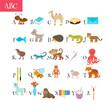 ABC. Cartoon vocabulary for education. Children alphabet with cu