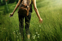 Woman Traveler Walking Among Grass In Meadow And Holding In Hand