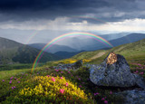 Fototapeta Tęcza - Summer landscape with rainbow and flowers in the mountains