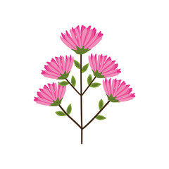 Fototapetaflower garden floral nature plant icon. Isolated and flat illustration. Vector graphic