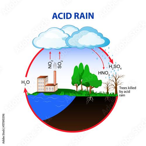 acid rain posters \u0026 wall art prints buy online at europostersphoto acid rain