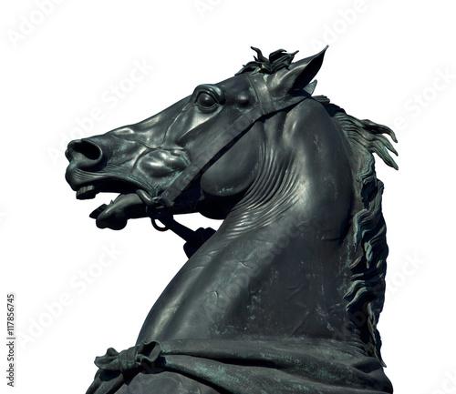 Horse sculpture detail Canvas-taulu