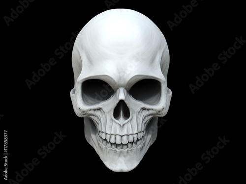 White clay skull - 3D Illustration Wallpaper Mural