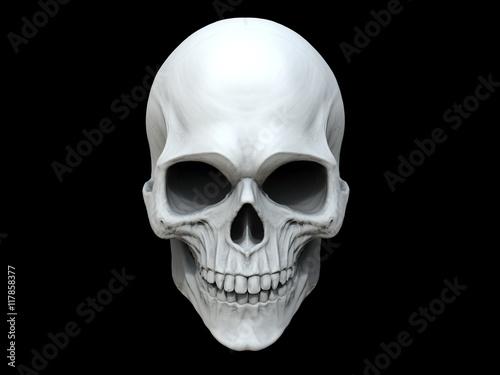 White clay skull - 3D Illustration Canvas Print