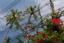 High-voltage Transmission Line...