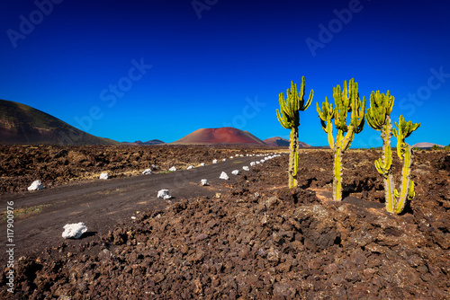Tuinposter Canarische Eilanden Road in the Fire Mountains, part of Timanfaya National Park, Lanzarote, Canary Islands, Spain