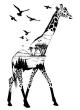 Vector Hand Drawn Giraffe For Your Design