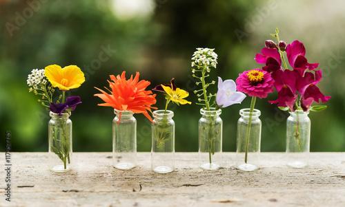 Papiers peints Narcisse nice flowers in the bottles