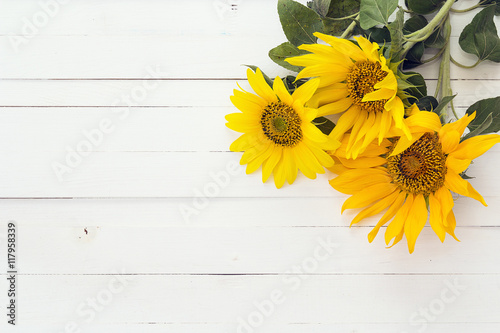 Poster Tournesol Background with a bouquet of sunflowers on a white painted woode