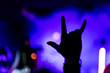 canvas print picture - Soft focus, blurred motion in a live concert in a small club. public with their hands raised. Rock and roll hand sign