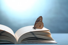 Book With Butterfly