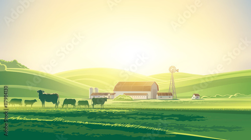 Fototapeta Rural dawn landscape with milk farm and herd cows. obraz
