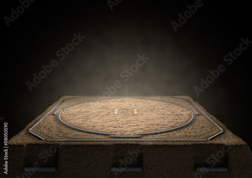 Photo  Sumo Ring Empty