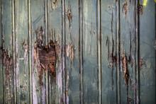 Rotten Wood Grunge